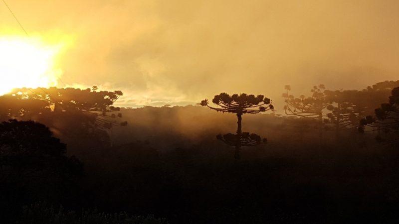 Domingo de sol,  nuvens e nevoeiro