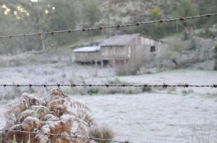 Chuva retorna após Estado ter dia mais frio do ano e muita geada