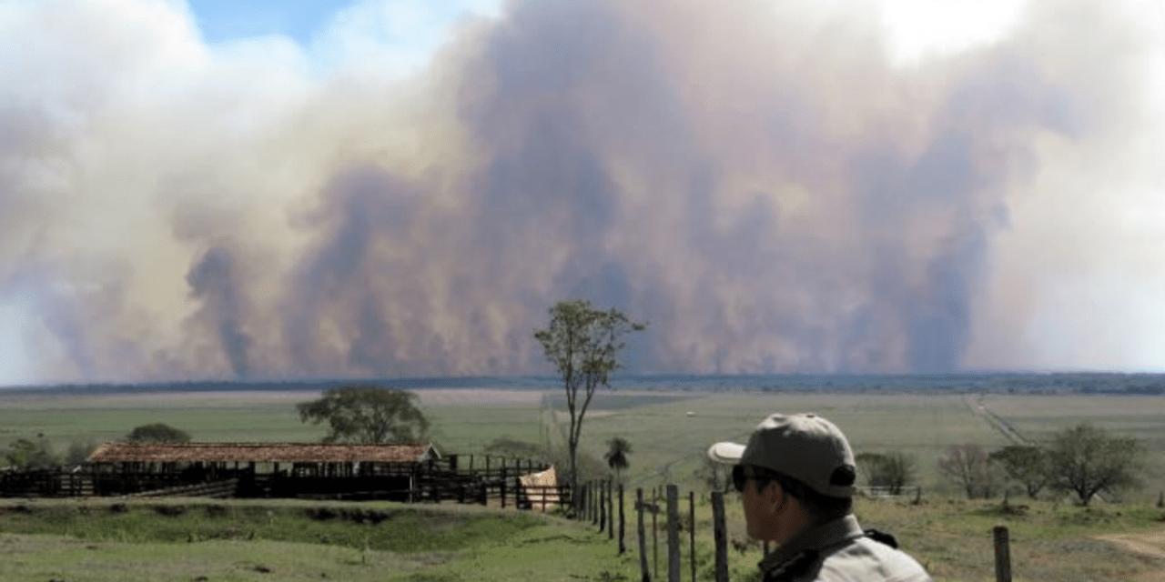 Fogo consome parque nacional no Paraná em meio à estiagem