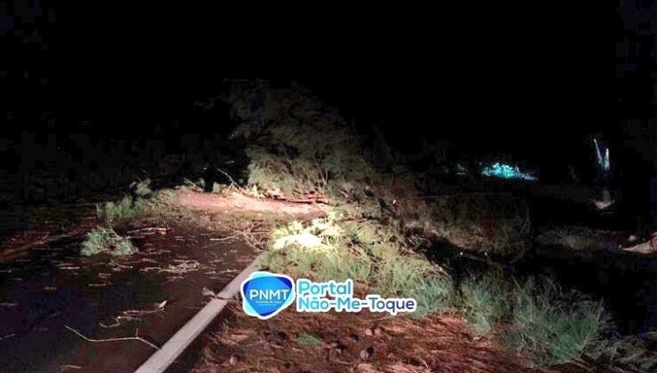Vento provoca destruição no Norte gaúcho