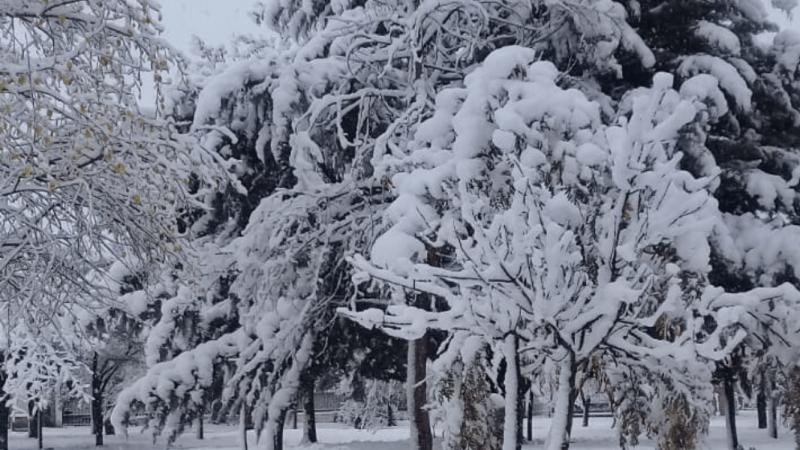 Neve e -10°C na Argentina