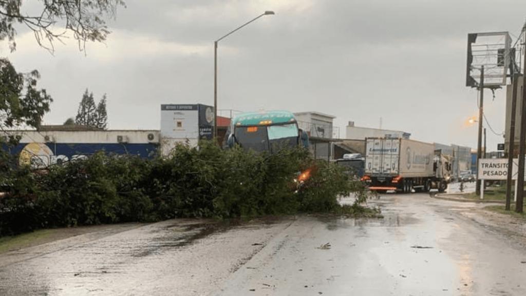 Tempestade severa faz estragos na fronteira com o Uruguai