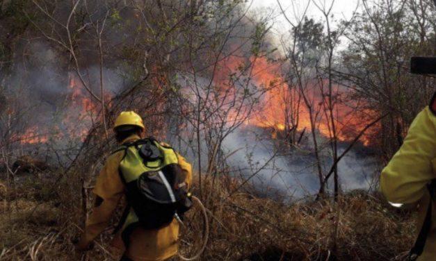 Bolívia vive desastre ambiental pela onda de incêndios