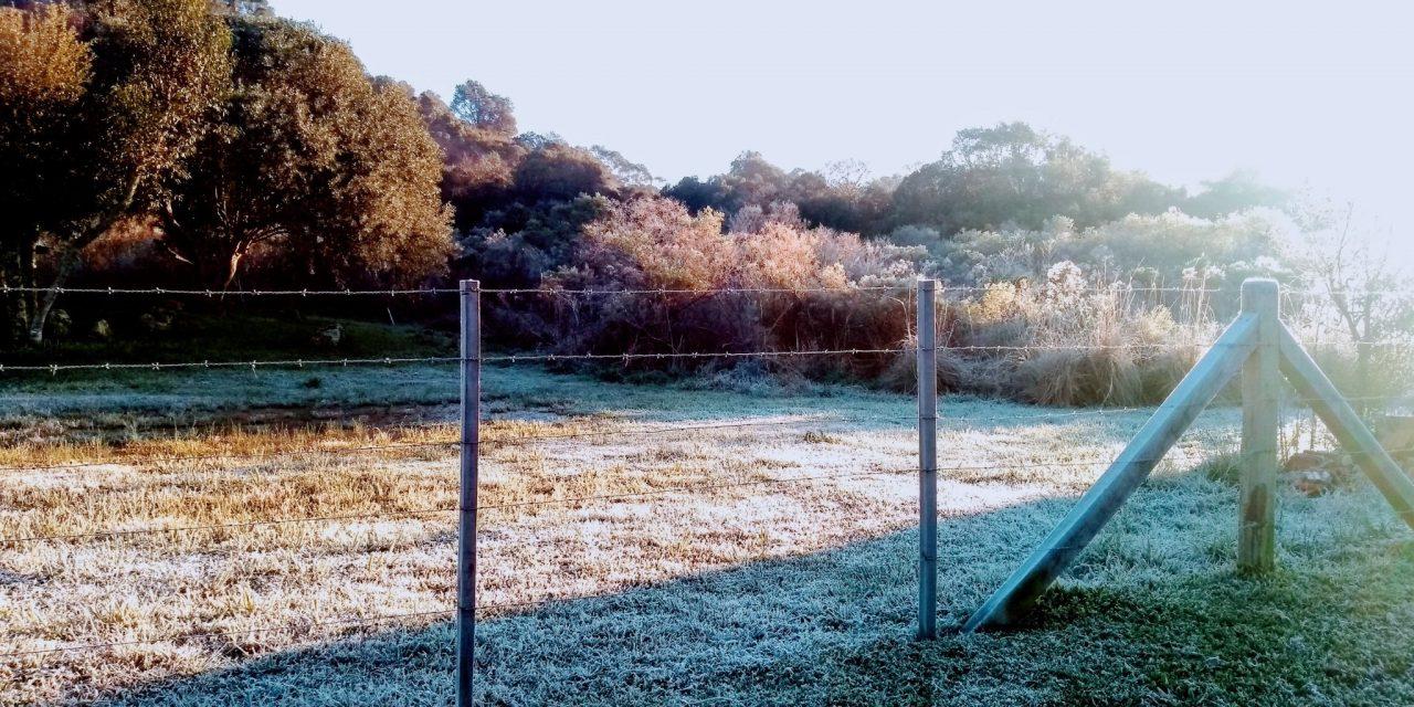 Frio segue intenso em domingo de sol que começa com geada ampla