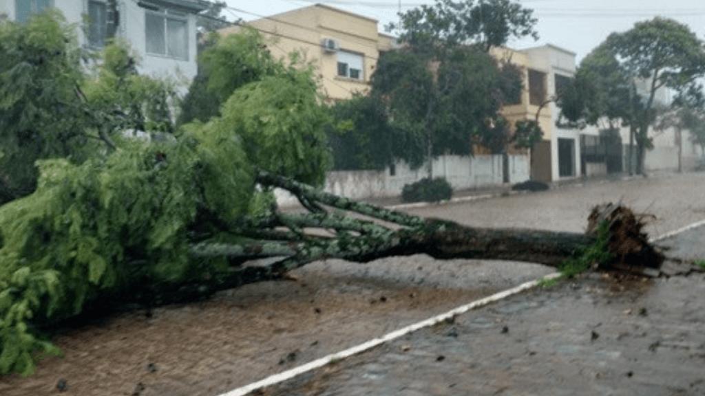 Vendavais fizeram estragos em várias cidades gaúchas