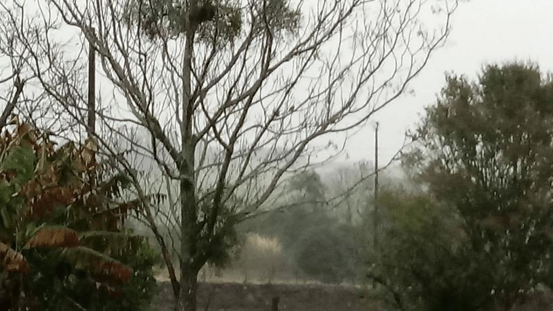 Veja os registros de chuva das últimas 48h no Rio Grande do Sul