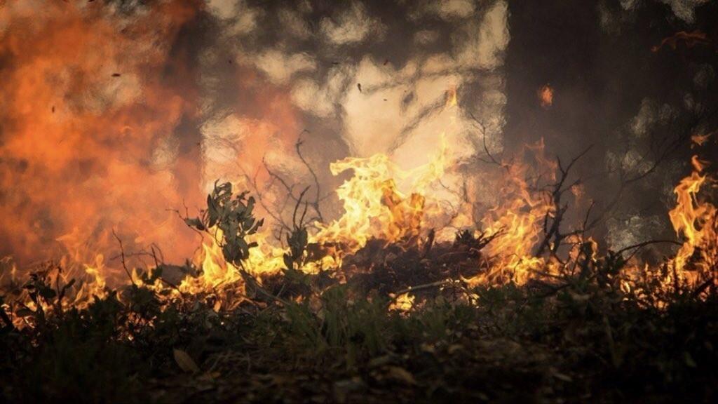 Recordes de queimadas no Brasil ocorreram na década passada