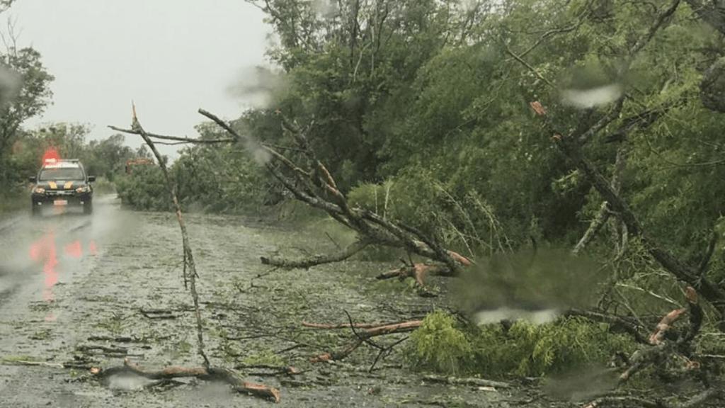 Temporal faz estragos e bloqueia rodovia no Oeste gaúcho