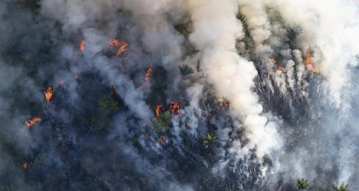 Fumaça de queimadas na Amazônia chega ao Sul do Brasil