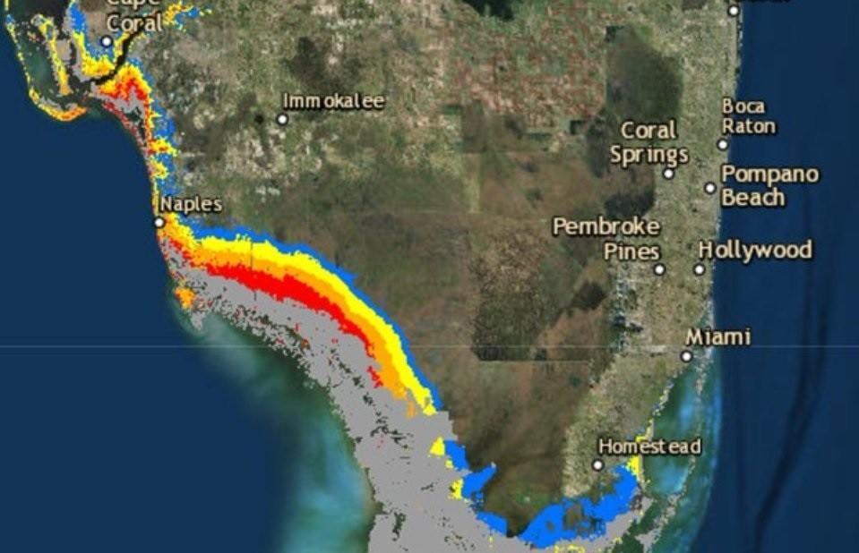 Dez informações sobre o furacão Irma