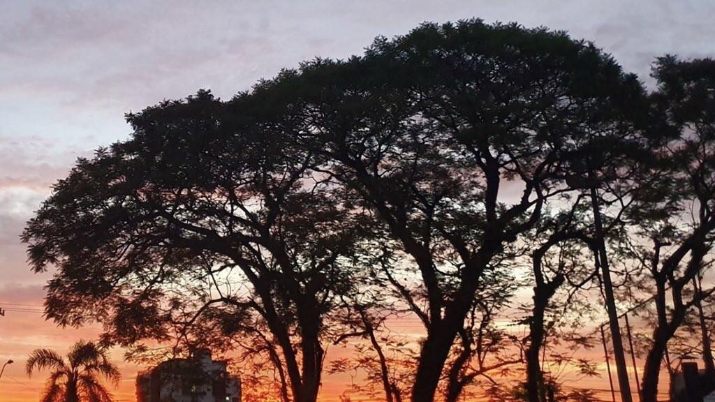 Sol predomina no Rio Grande do Sul ao longo desta quarta-feira