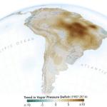 Estudo mostra preocupante diminuição da umidade na região amazônica