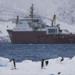 Recordes de temperatura alta e degelo acelerado na Antártida
