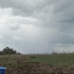 Chuva dos próximos dias terá mínimo impacto na estiagem