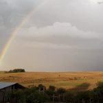 Chuva trará alívio localizado e não resolverá crise da estiagem