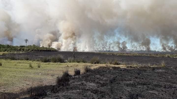 Grande incêndio em vegetação é registrado no Sul gaúcho