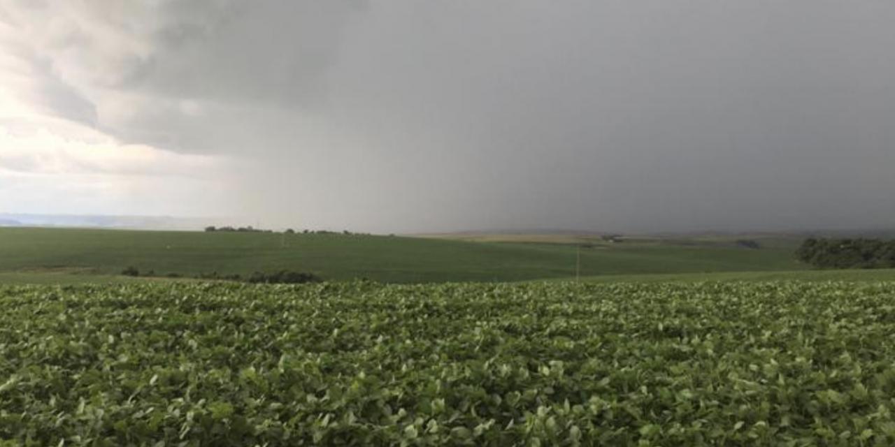 O que esperar da chuva nesta semana sob o cenário de estiagem?