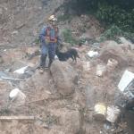Baixada Santista é mais um dos desastres da chuva no Sudeste