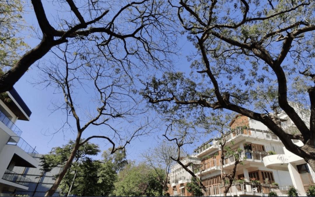 Indianos se espantam com céu azul com a crise do coronavírus
