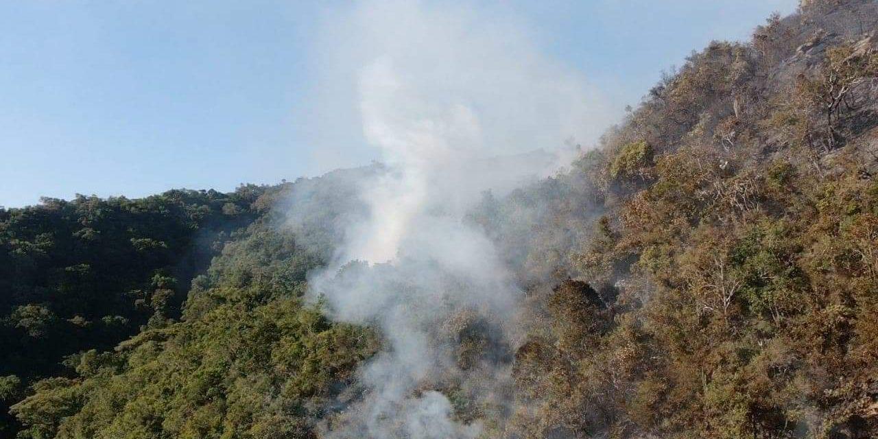 Risco de incêndios está muito alto no Rio Grande do Sul