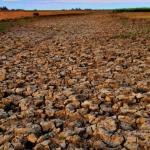 Estiagem traz falta de água no Uruguai