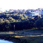 Rio Grande do Sul teve mínima de 0,0°C nesta quinta