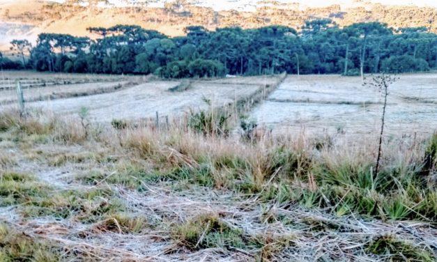 Feriado começou com temperatura negativa no Sul do Brasil