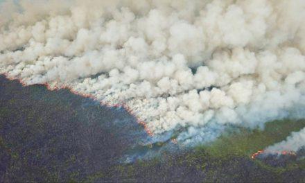 Seca provoca incêndio que já dura 20 dias na Grande Porto Alegre