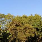Lista das menores mínimas hoje no Rio Grande do Sul
