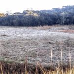 Rio Grande do Sul tem quarto dia do ano com mínimas negativas