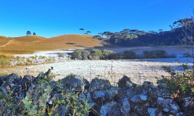 Sábado em Santa Catarina começou com 6°C abaixo de zero