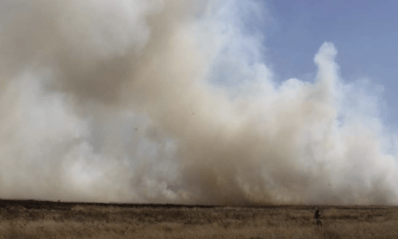 Números de incêndios explodem no Sul e batem recordes