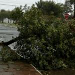 Vento forte do ciclone traz transtornos no Estado