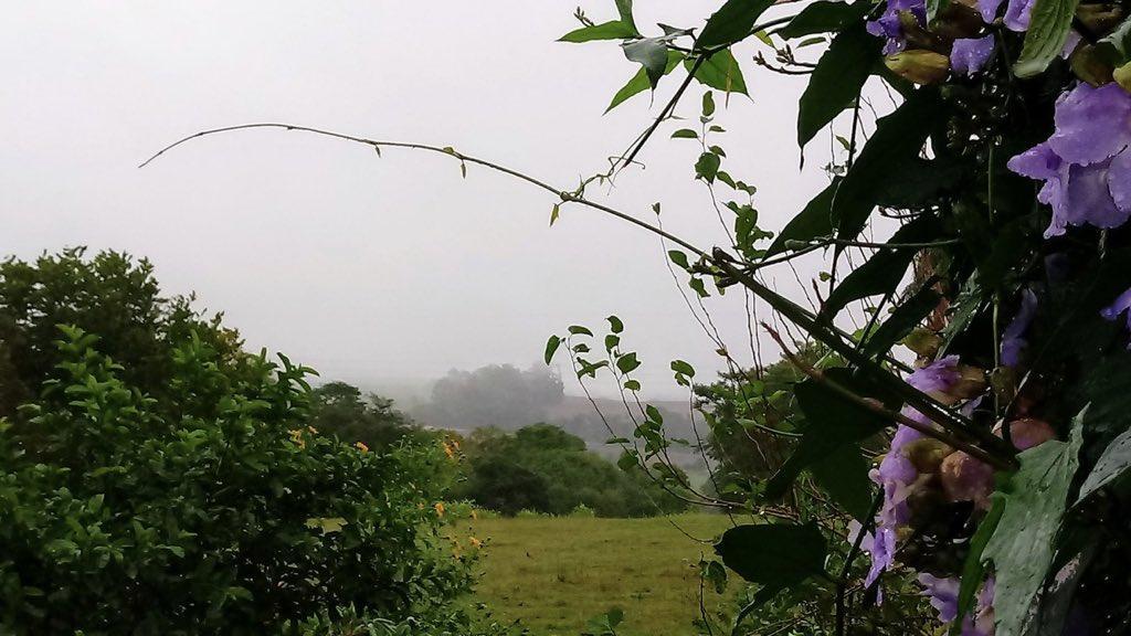 Chuva de um mês em um dia no Noroeste do Rio Grande do Sul