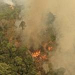 Queimadas na Amazônia podem agravar epidemia na região
