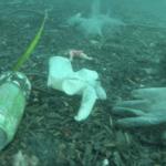 Epidemia traz novo problema ambiental: luvas e máscaras no mar
