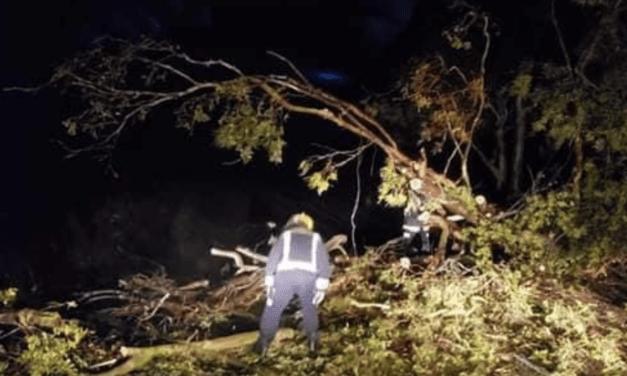 Vento traz danos no Uruguai