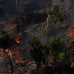 Queimadas na Amazônia abaixo da média histórica em maio