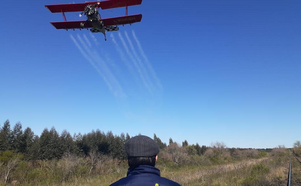 Sol e frio ajudam combate por terra e ar dos gafanhotos na Argentina
