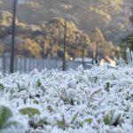 Previsão do tempo – Domingo começará com frio intenso e muita geada
