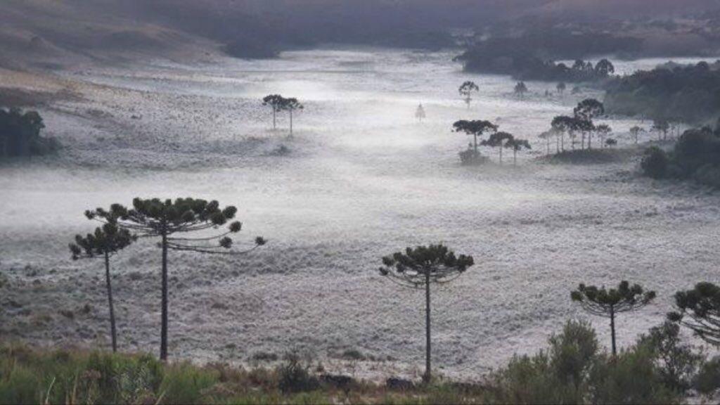 Santa Catarina já chega a 50 dias de mínimas negativas no ano