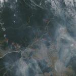 Dados e imagens de satélite mostram muitas queimadas na Amazônia