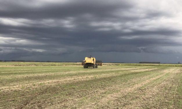 Previsão do tempo – Projeção de chuva para 45 dias