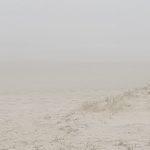 Previsão do tempo – Muito nevoeiro costeiro
