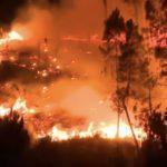 Portugal enfrenta canícula e onda de incêndios
