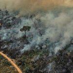 Um triste retrato da Amazônia no seu dia