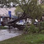 Vento superou 100 km/h nos três estados do Sul do Brasil