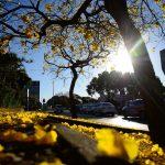 Previsão do tempo – Maior parte do Brasil segue seco