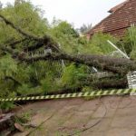 Vento fez estragos na Grande Porto Alegre