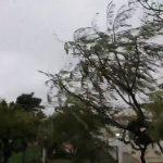 Vento forte atinge a Grande Porto Alegre